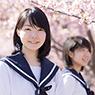 東京都「私立高校授業料実質無償化」で受験は変わる?
