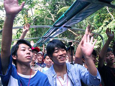 平川先生おすすめの水陸両用車による熱帯雨林ツアー。手を伸ばせば熱帯植物に触れてしまいそうなほどの近さ!