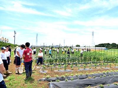 農場実習3