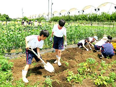 農場実習5