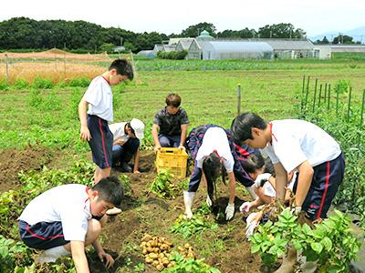 農場実習7