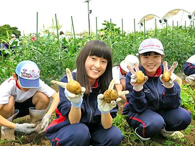 農場実習8