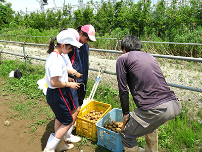農場実習11
