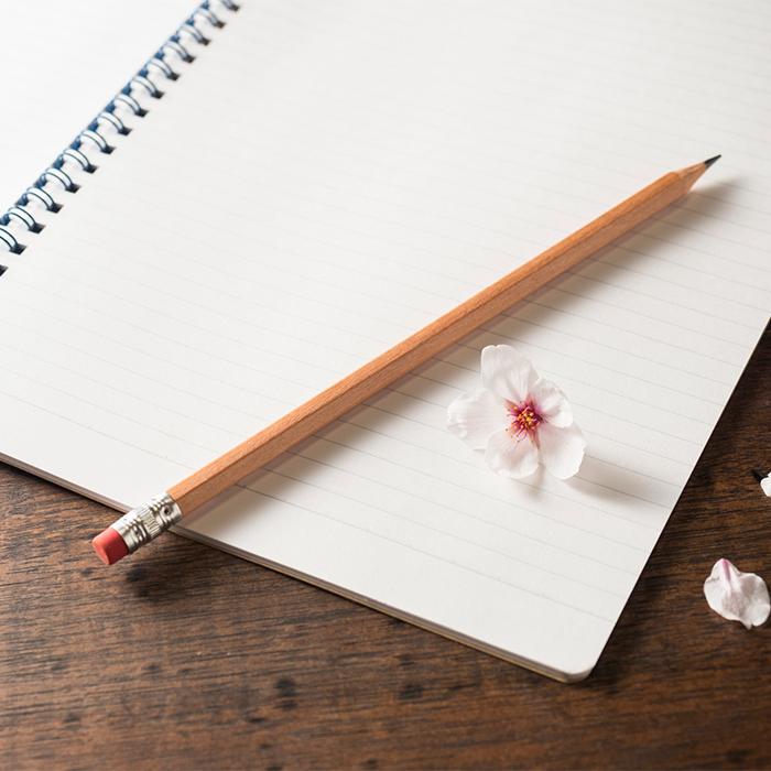 「【中学受験の過去問】小6春にやるならどう取り組む?」記事サムネイル