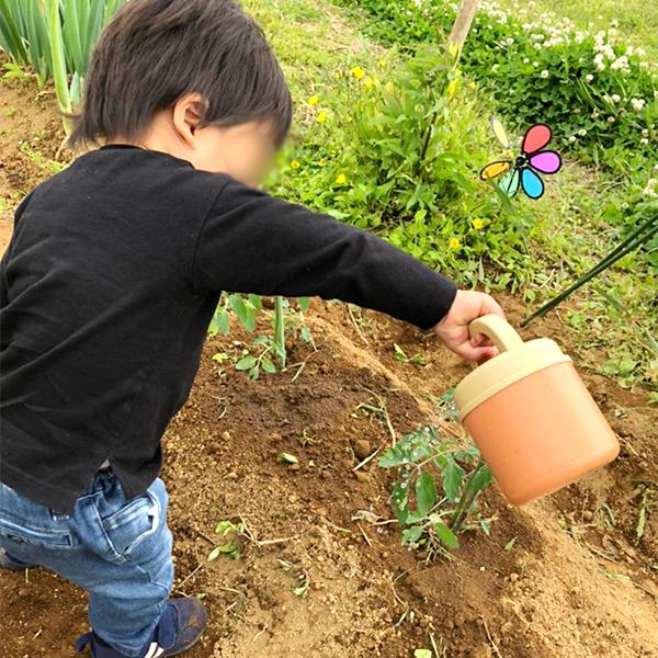 1年前は何もできなかった息子も、今回は小さいじょうろでお水をあげてくれました。