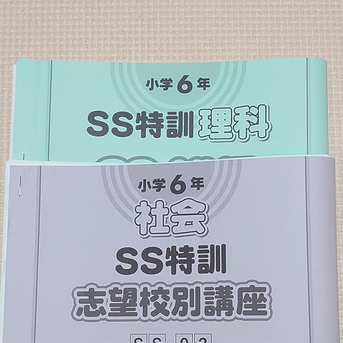 「サピックス6年生、志望校別講座がスタート【さくら子 vol.10】」記事サムネイル