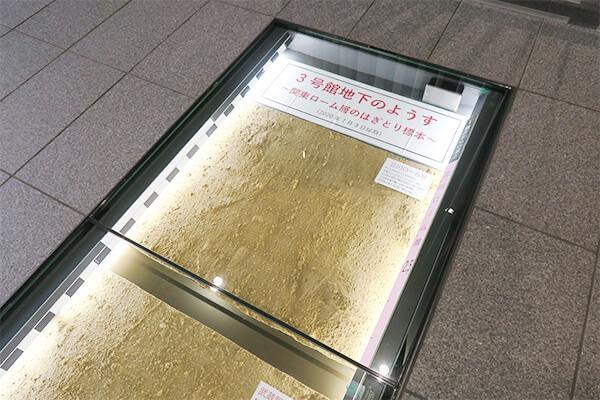 建物1階の床には建物地下の「はぎとり標本」が埋め込まれている。
